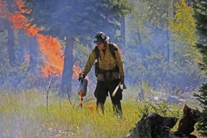 Latest: Forest Service report calls for changes in wildfire management