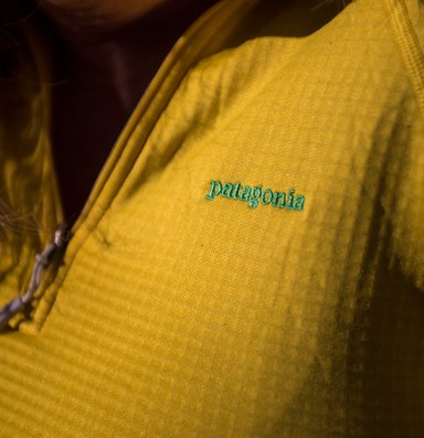 Is sporting a Patagonia fleece a political statement?