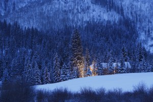 See paradise beneath the Colorado peaks