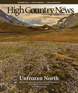 Unfrozen North