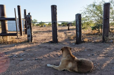 How the U.S.-Mexico border has split the Tohono O'odham