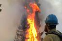Forest Service might limit public comments