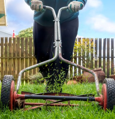 The tyranny of lawns and landlords