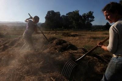 The case for carbon farming in California