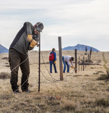 Behind the wire with a fence ecologist