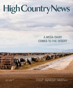 A Mega-Dairy Comes to the Desert