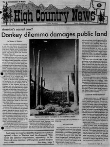 Donkey dilemma damages public land