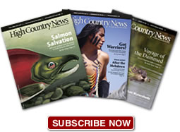 Two issues of High Country News for a low price