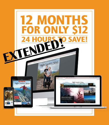 12-for-12-Landing-Page-Fall-2018-EXTENDED.jpg