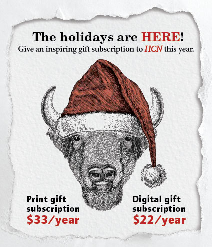 Holiday-Gift-Campaign-Landing-Page-BISON.jpg