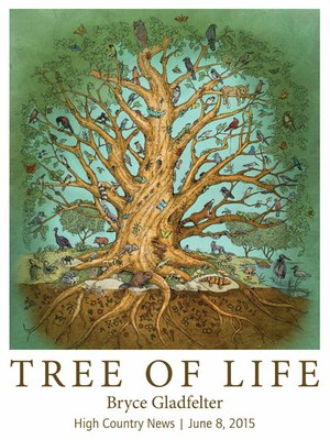 tree_of_life_small_low.jpg