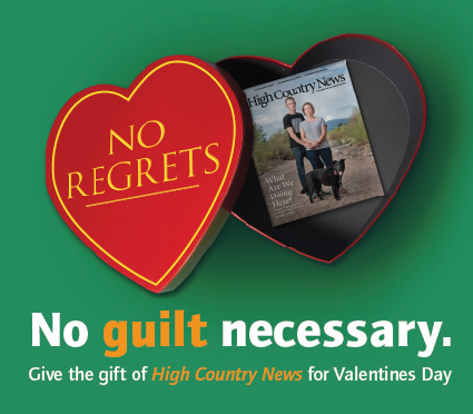 Valentines-Day-Campaign-Landing-Page.jpg