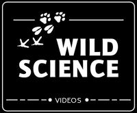 WildSciencewidget.png